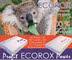 Новая поставка — офисная бумага Ecorox