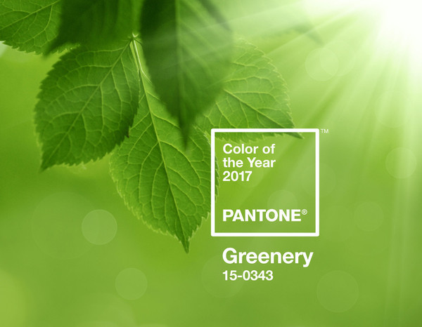 Pantone выбрал цвет 2017 года